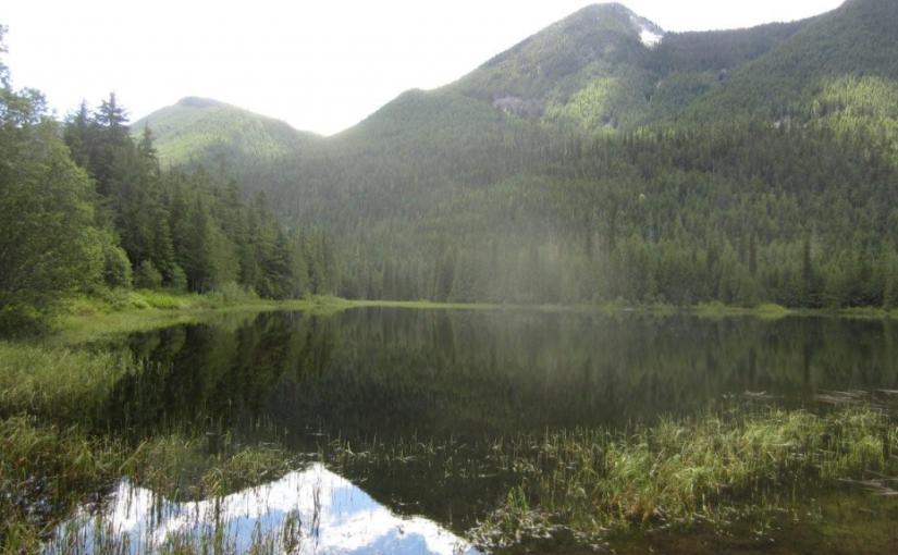Beaver Lake Rec Site